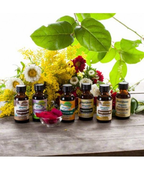 Sample Pack of Organic Fragrance Oils (Alcohol Soluble)