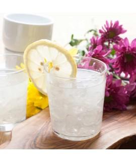Organic Lemonade Snow Cone Syrup