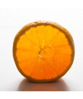Organic Orange Snow Cone Syrup