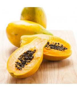 Organic Papaya Snow Cone Syrup