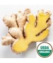 Organic Gingerbread Flavor Powder