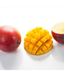 Organic Mango Flavor Syrup