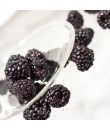 Blackberry Organic Flavor Emulsion for High Heat Applications