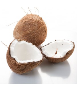 Organic Caribbean Coconut Fragrance Oil (Alcohol Soluble)
