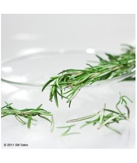 Organic Antioxidant with Rosemary