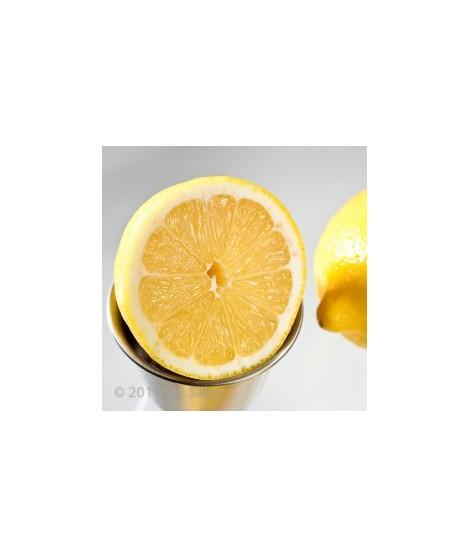 Organic Lemon Flavor Powder