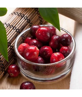 Cranberry Purified Extract Powder