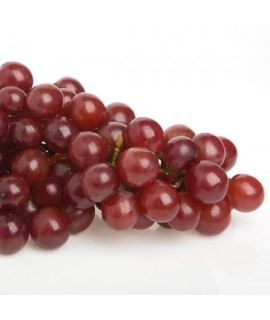 Organic Grape Flavor Sports Drink Concentrate