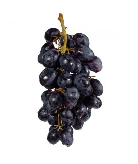 Organic Concord Grape Flavor Extract