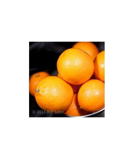 Organic Orange Flavor Powder