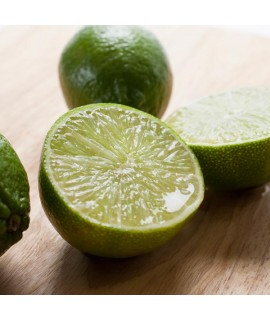 Organic Key Lime Fragrance Oil (Oil Soluble)