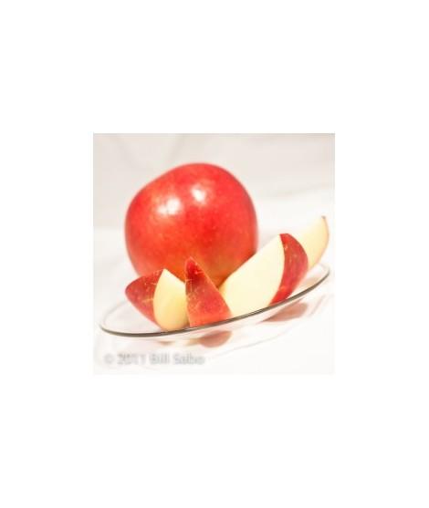 Apple Snow Cone Flavor Syrup