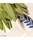 Organic Sage Flavor Powder