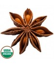 Organic Star Anise Flavor Powder