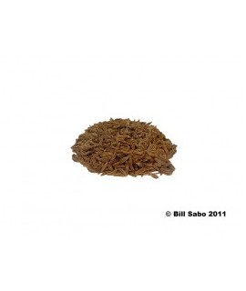 Caraway Flavor Extract Without Diacetyl