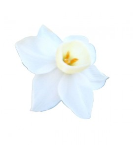 Organic Narcissus Fragrance Emulsion (Water Soluble)