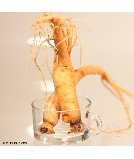 Organic Ginseng Flavor Extract