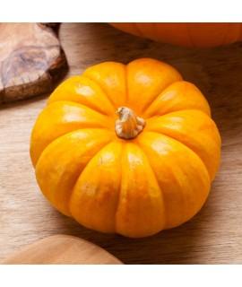 Organic Pumpkin Spice Coffee Flavor Syrup