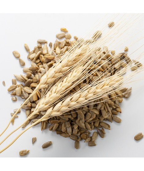 Organic Malt Flavor Extract