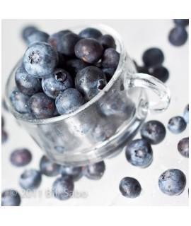 Blueberry Flavor Syrup, Sugar Free, Powdered
