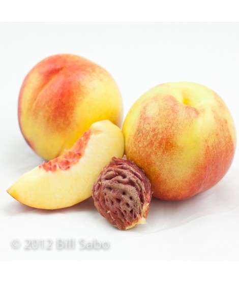 Organic Nectarine Flavor Extract