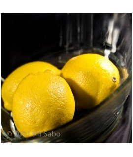 Lemon Italian Soda Flavor Syrup, Sugar Free, Powdered