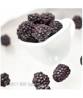 Blackberry Flavored Italian Soda Syrup