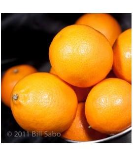 Mandarin Orange Flavored Italian Soda Syrup