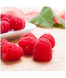 Raspberry Sugar Free Syrup