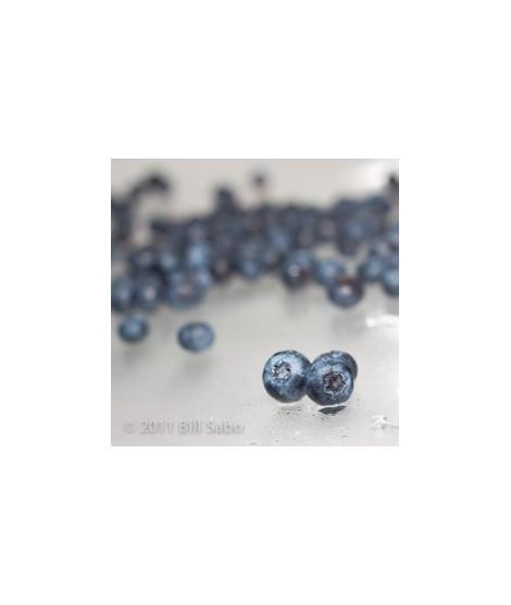 Organic Blueberry Smoothie/Shake