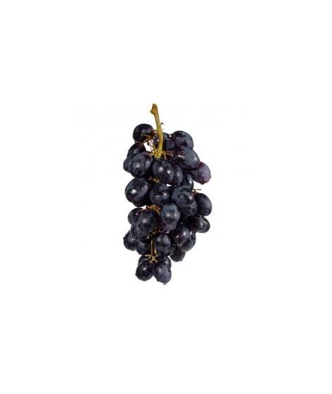 Organic Concord Grape Smoothie/Shake Base