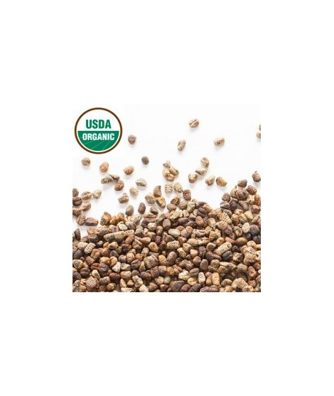 Organic Cardamom Coffee and Tea Flavoring