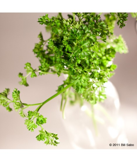 Organic Parsley Flavor Extract