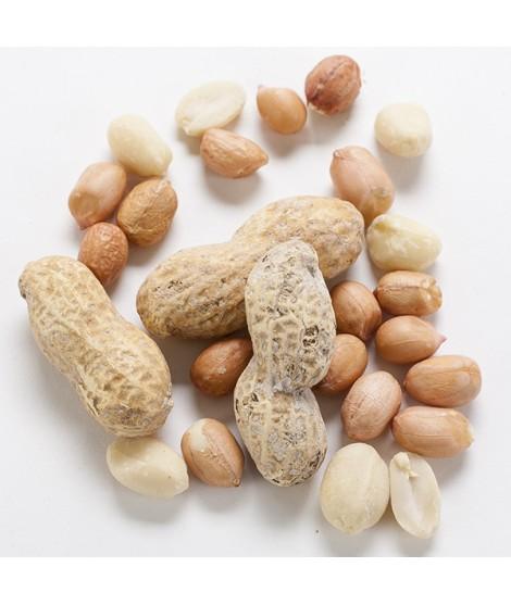 Organic Peanut Flavor Extract