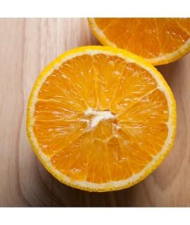 Organic Orange Essential Oil (Florida, Valencia, Cold Pressed)