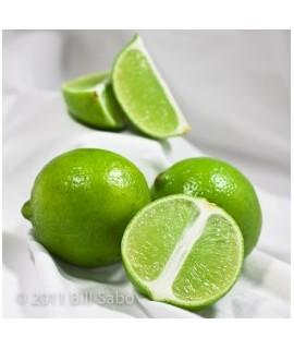 Organic Lime Coffee and Tea Flavoring