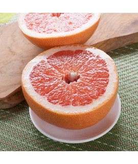 Pink Grapefruit Flavor Oil for Lip Balm