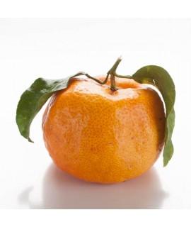 Tangerine Flavor Oil for Lip Balm