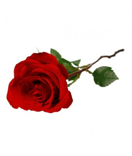 Organic Rose Flavor Extract
