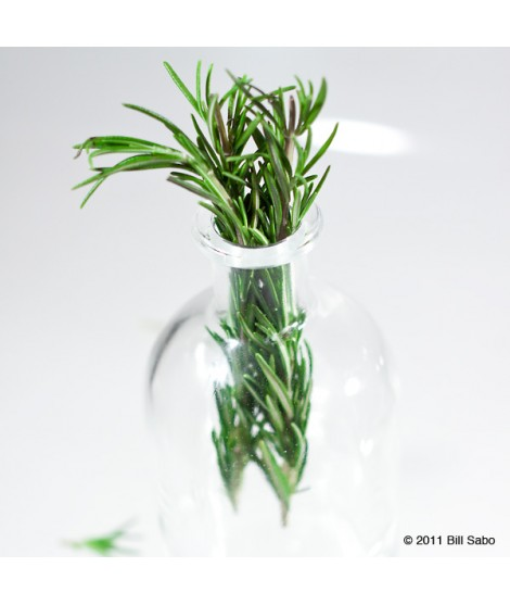 Organic Rosemary Flavor Extract