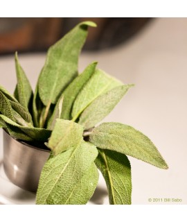 Organic Sage Flavor Extract