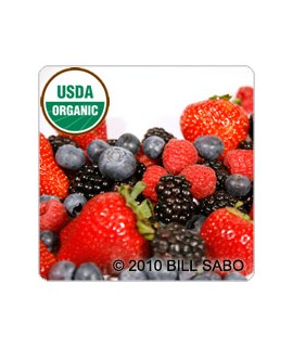 Tea-Berry Extract, Organic