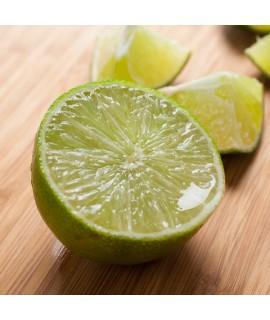 Hibiscus Tea Lime Flavor (24 Tea Bags)