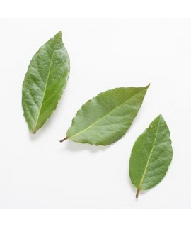 Whole Bay Leaves