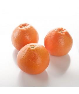Grapefruit ( California 10X Fold) Essential Oil