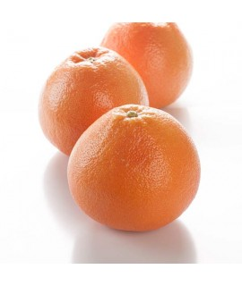 Grapefruit Essential Oil (10X Fold, California)