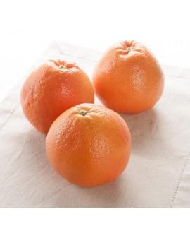 Grapefruit Essential Oil (2X Fold, Florida)