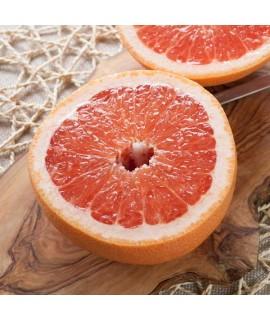 Grapefruit Essential Oil (5X Fold, Florida)