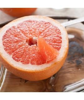 Grapefruit Essential Oil (California)