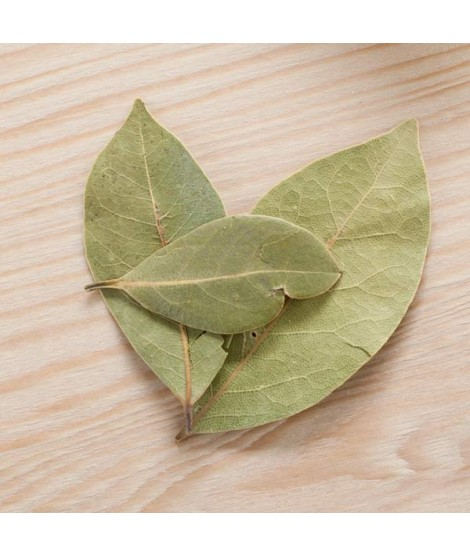 Sante Buchu Leaf Essential Oil